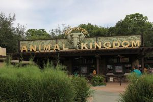 Parques de Orlando - Animal Kingdom